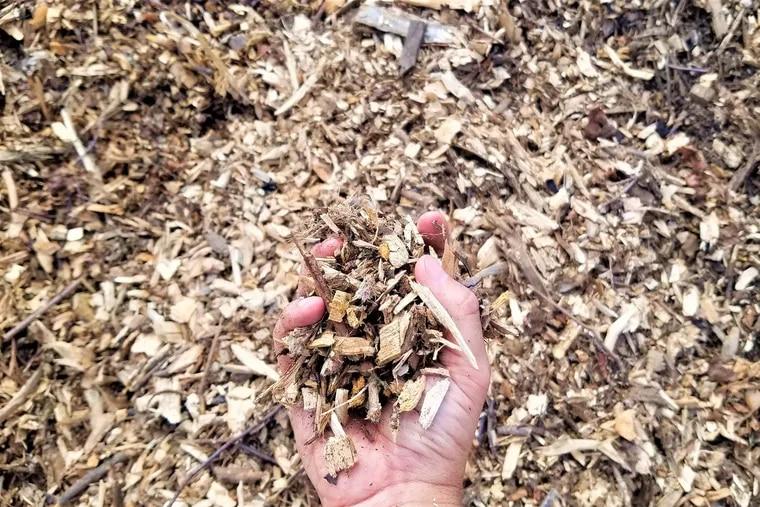 Wood chips at Philadelphia's Fairmount Park Organic Recycling Center.
