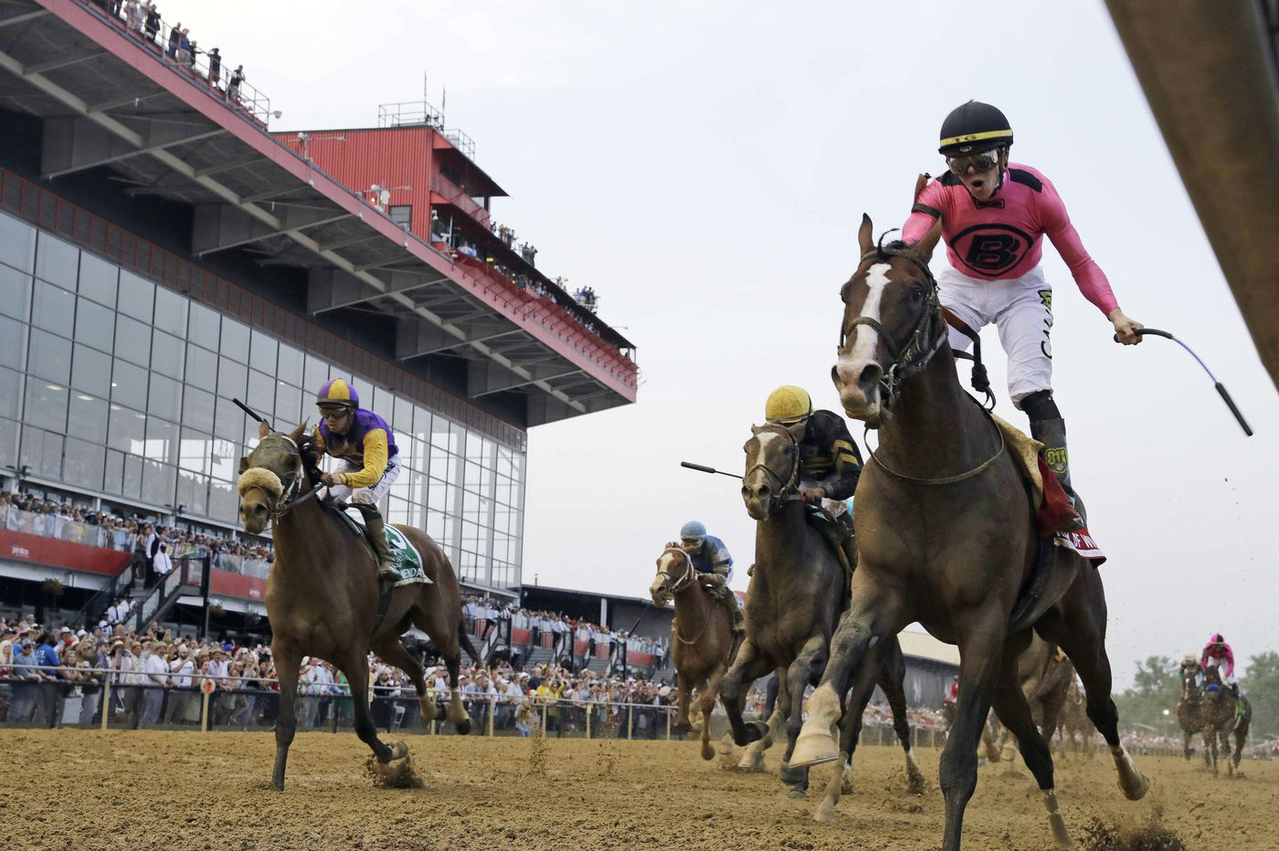 Tacitus and Intrepid Heart at the top of handicapper's