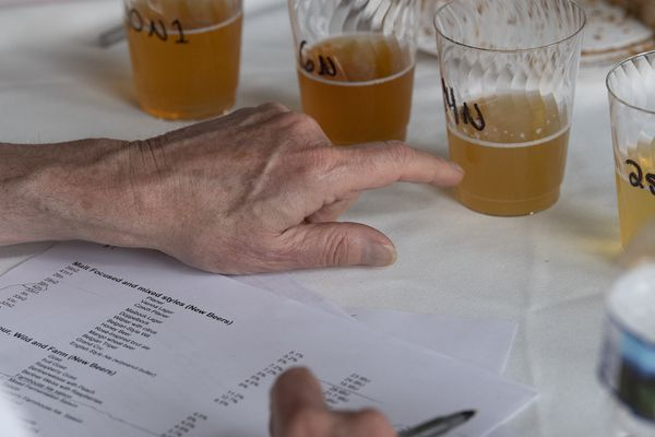 Meet the Philly beer experts who judged Brewvitational 2019