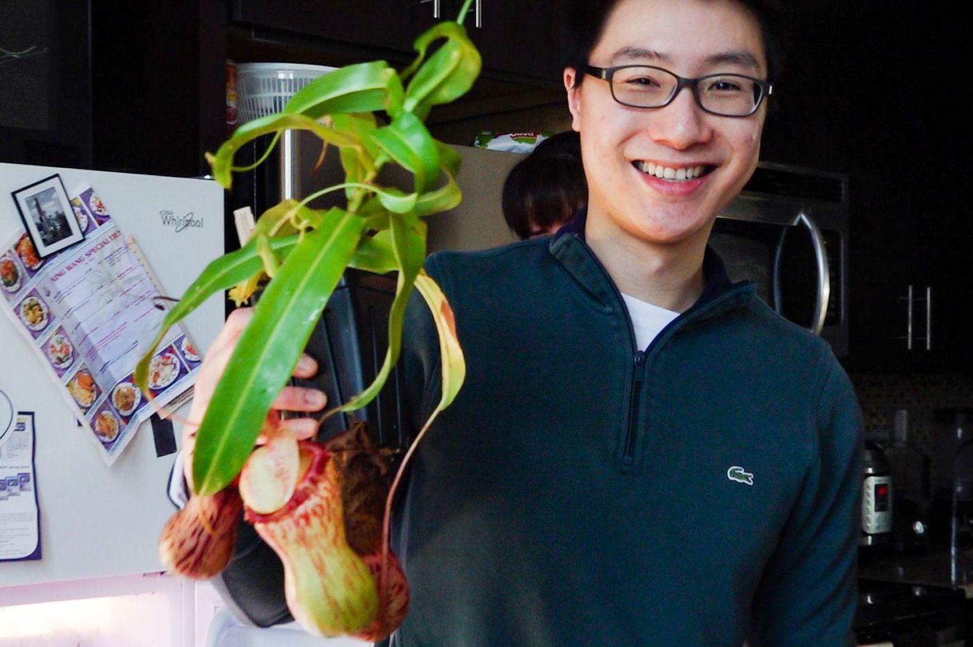 Meet the Penn med student who grows bug-eating plants for the Philadelphia Flower Show