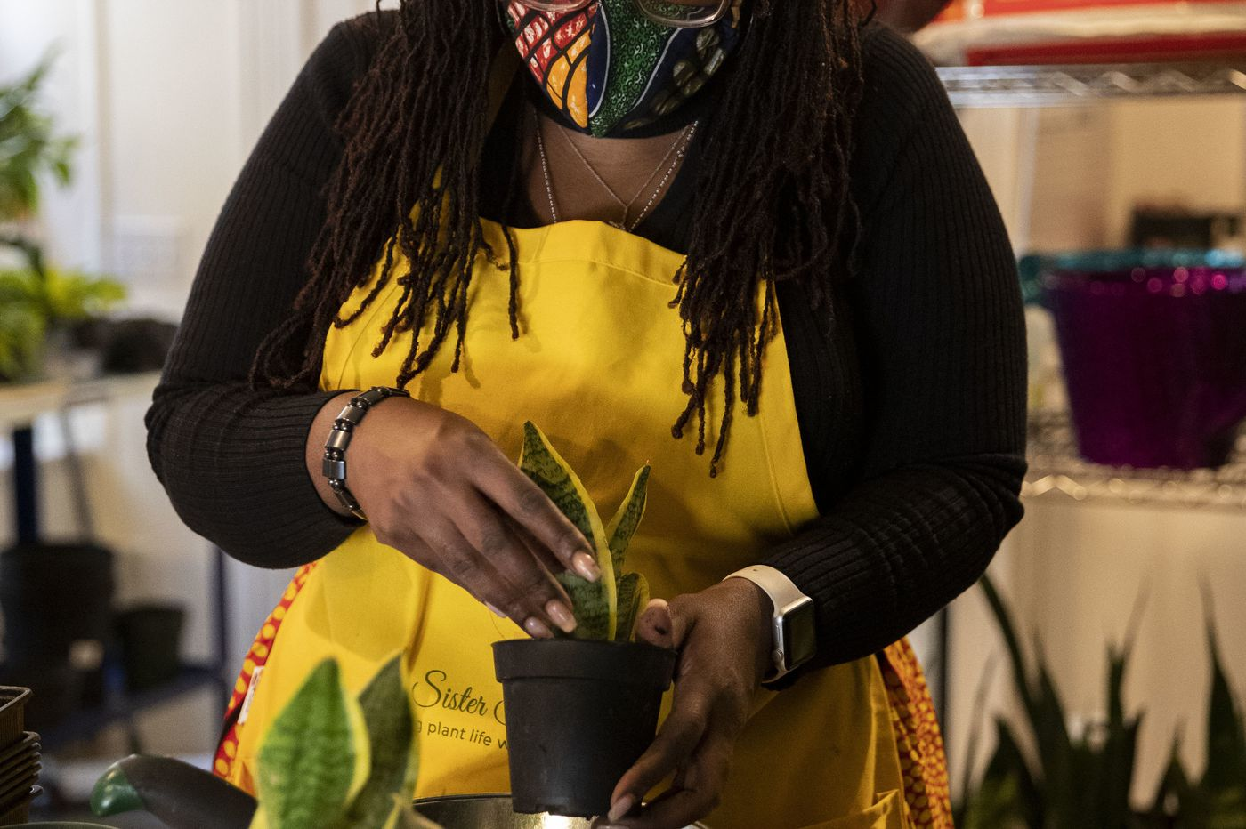 A new plant shop sprouts in Chestnut Hill, and offers just the kind of healing we need right now | Helen Ubiñas