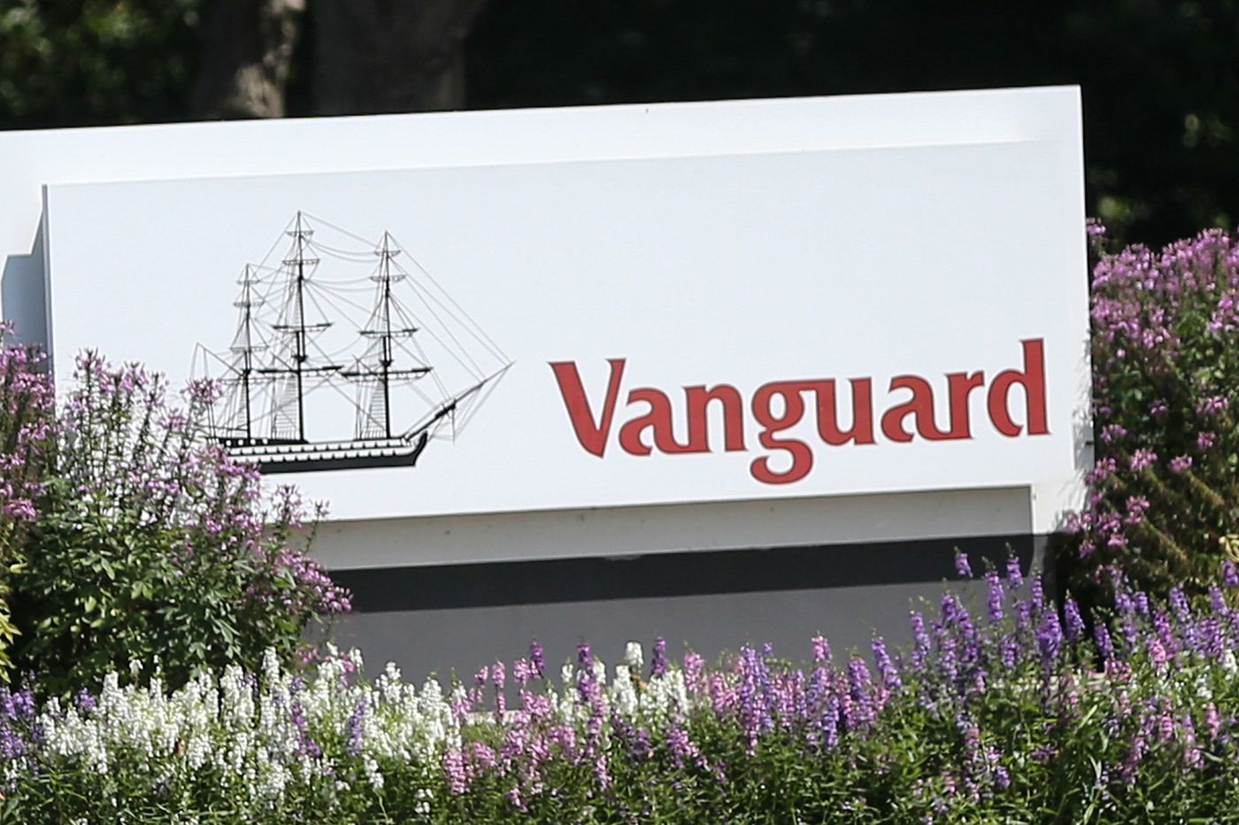 Vanguard Considering Private Equity for the very wealthy: WSJ