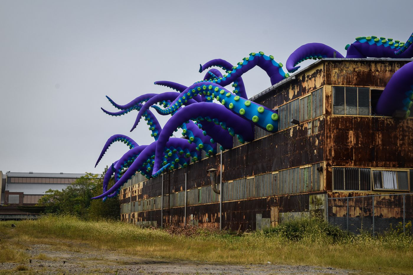 An inflatable sea monster takes over the Navy Yard