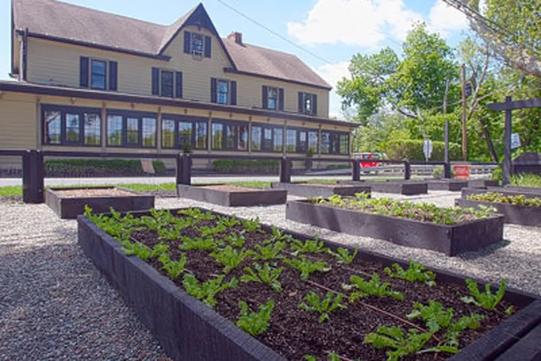 At the Yardley Inn in Yardley, executive chef Eben Copple persuaded the proprietor to remove the charming English boxwood garden and replace it with a kitchen garden in raised beds for growing produce for the menu. (Akira Suwa / Staff Photographer)