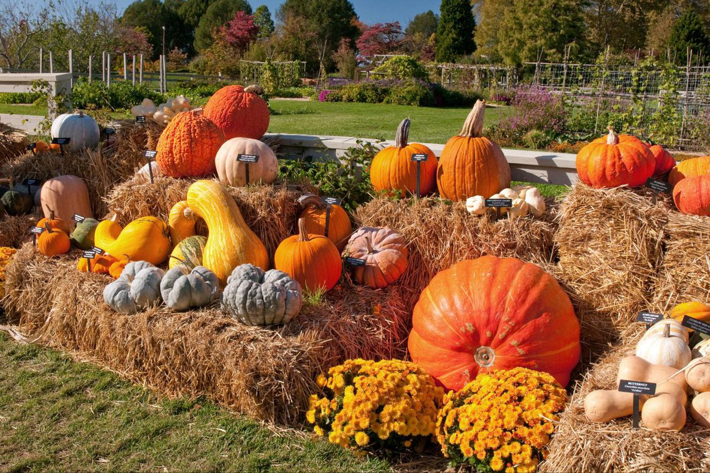 Boo-tiful forecast crowns near-record October