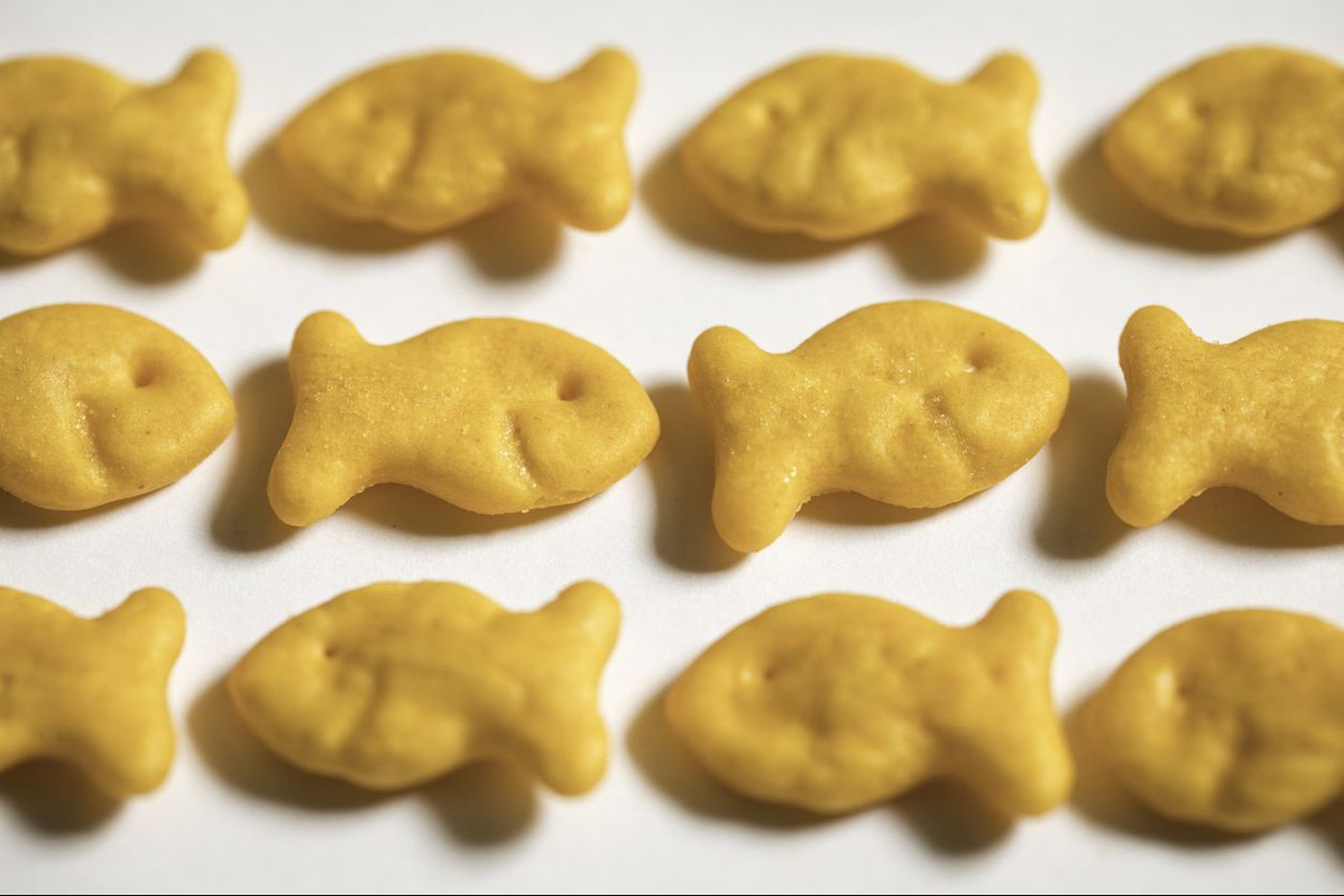 Some Goldfish crackers are recalled over salmonella, upsetting both toddlers and grownups