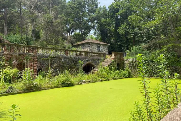 The Lower Pool, with its surreal green glow of duckweed, is a pond terrace that conveys the charm and mystique of a garden built between the world wars by a du Pont heiress and her husband.