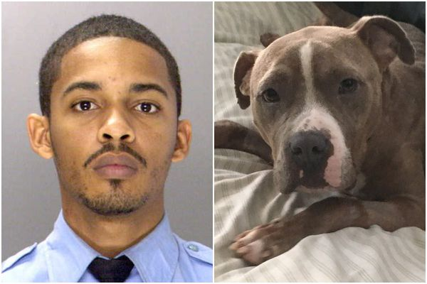 Ex-cop on D.A.'s 'Do Not Call' list pleads guilty to dumping dog in trash bag