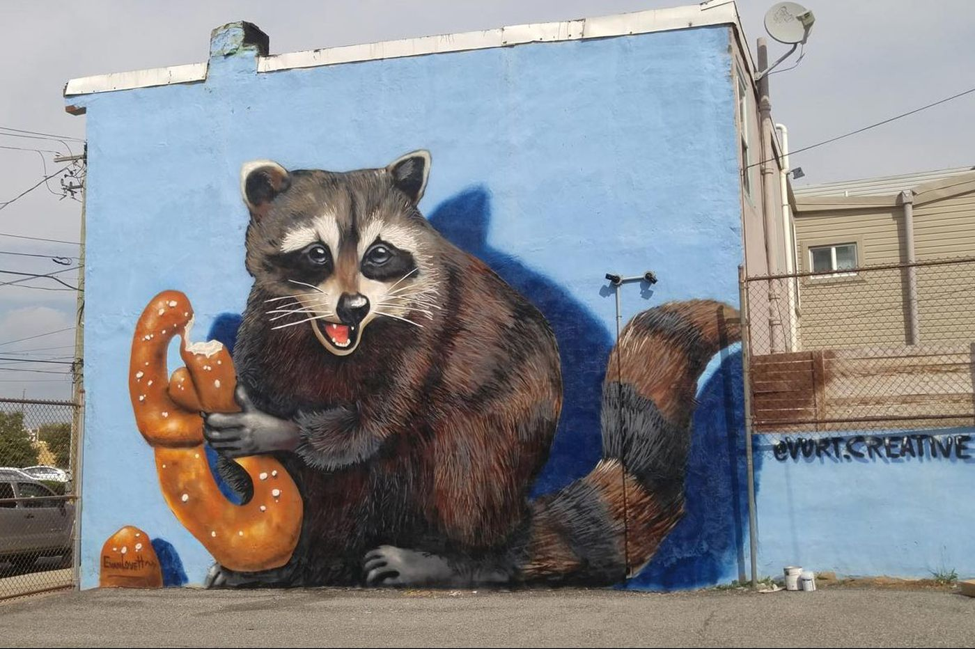 Philly's newest mural: A pretzel-eating raccoon
