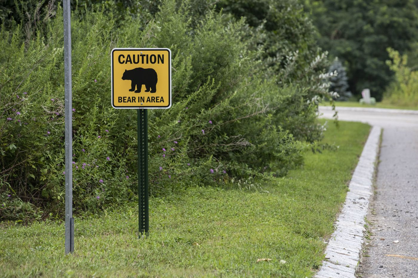 Bear 'attack' or 'encounter'? Latest incident fires up debate over hunting New Jersey's most controversial animal.