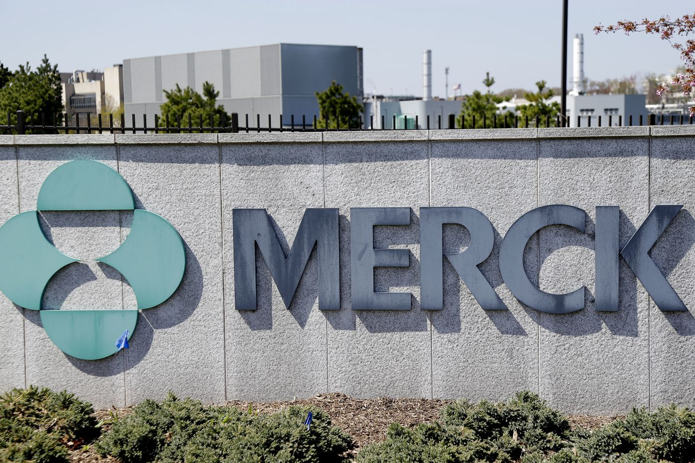 Merck joins the race to develop coronavirus vaccines and therapies