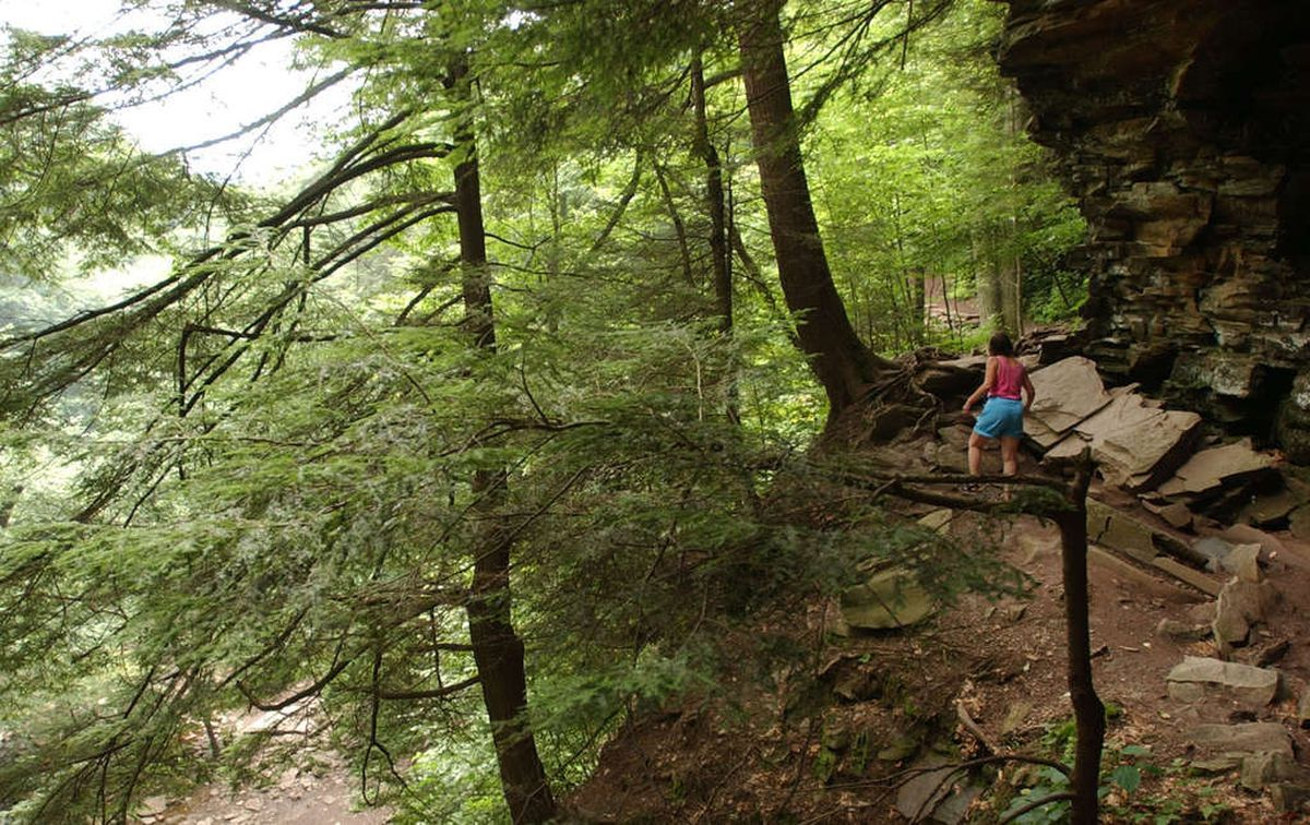 Pennsylvania: Some parks are too crowded. Here are the places to go instead.