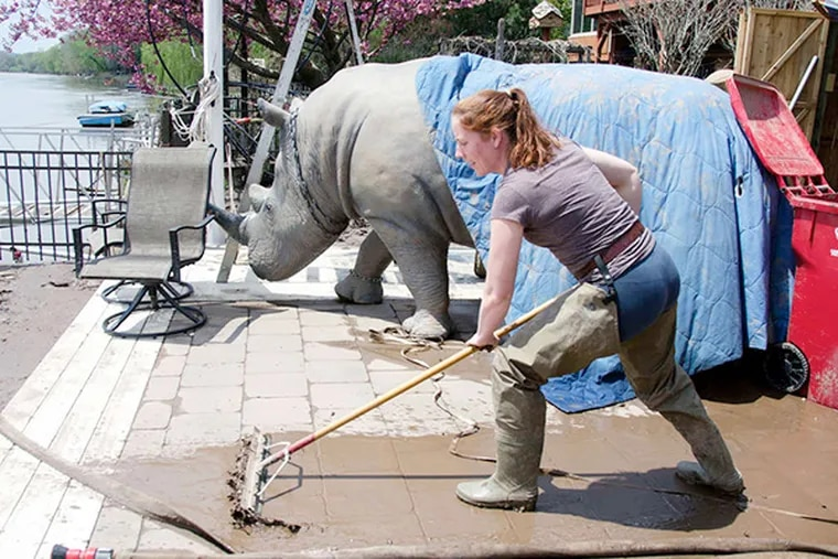 """DeeDee Mann-Witlin clears her back patio of mud near the family's """"pet"""" rhinoceros at her West Indian Lane home in West Norriton. The Schuylkill rose as high as nine feet in some of the neighborhood."""