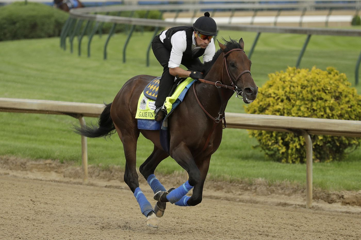 Betting Venues Continue To Be Limited For Kentucky Derby