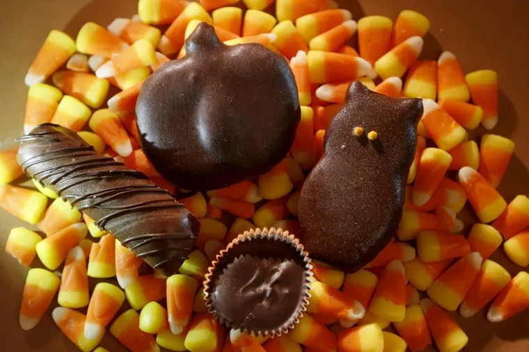 From left, a homemade Twix-like candy bar, a coconut chocolate bar, a peppermint patty owl, and a peanut butter cup on the bottom.