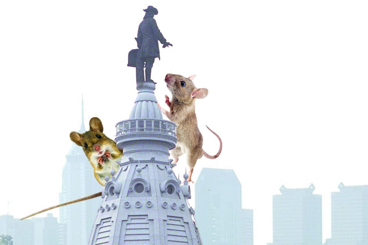Mice seen as invading City Hall