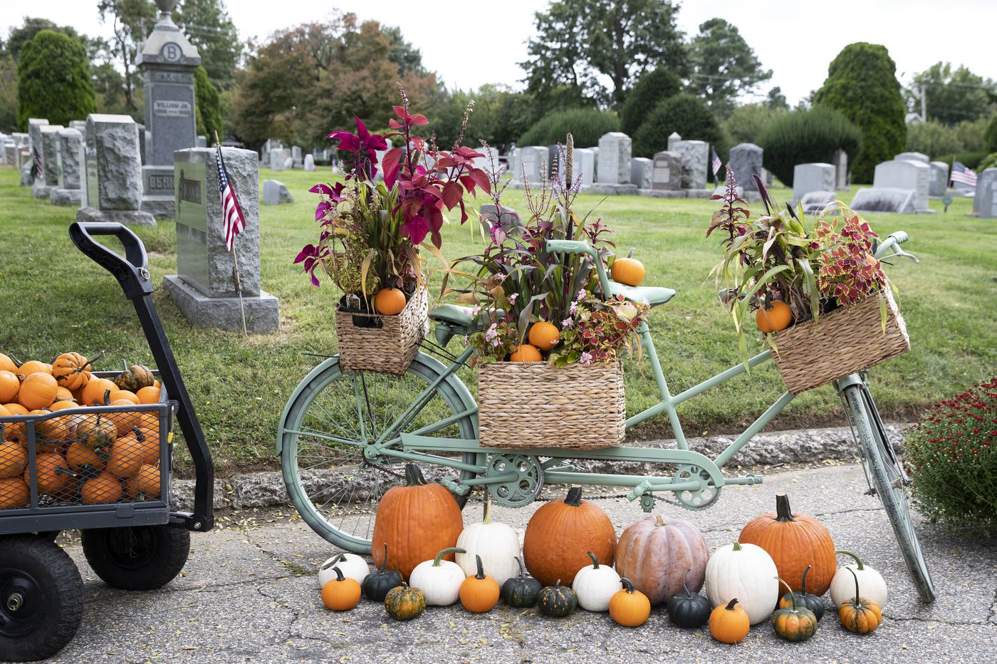 To do this week: What to do on Halloween