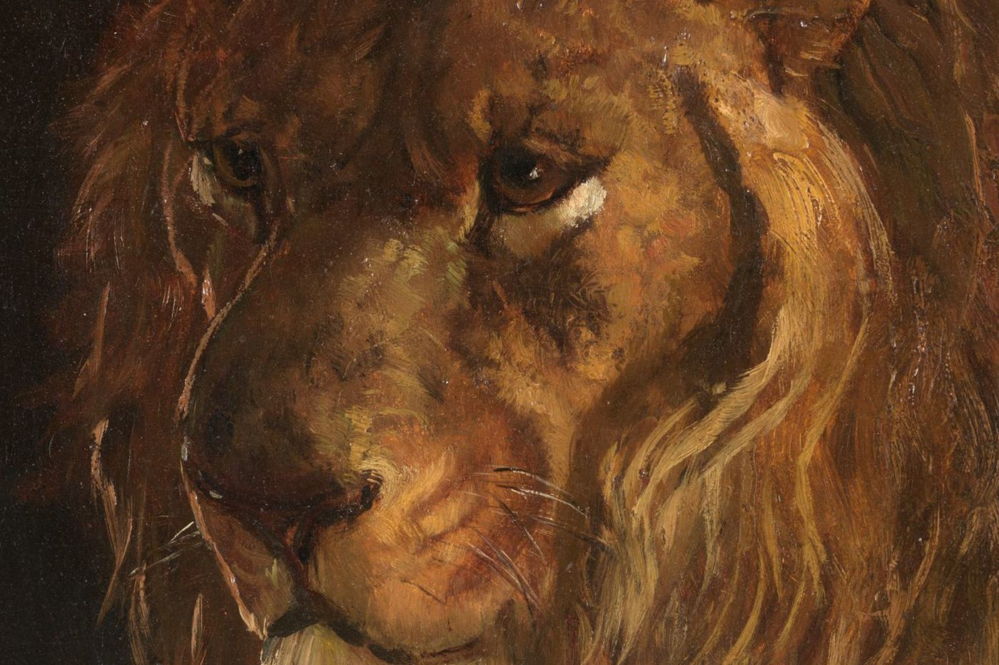 Henry O. Tanner's great painting of a wise old lion at the Philadelphia Zoo now belongs to PAFA