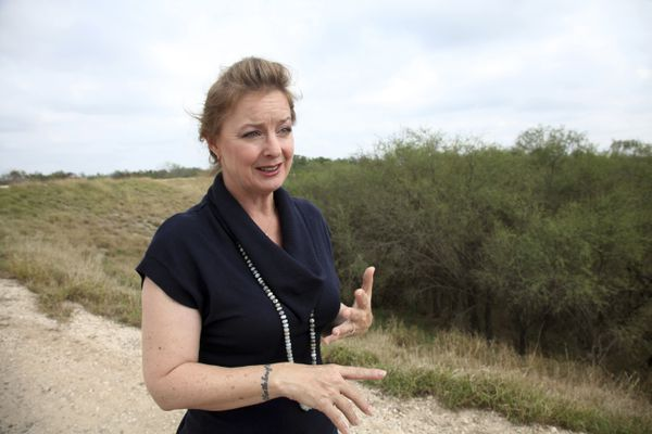 Meet the woman fighting to save the butterflies from Trump and his border wall | Will Bunch