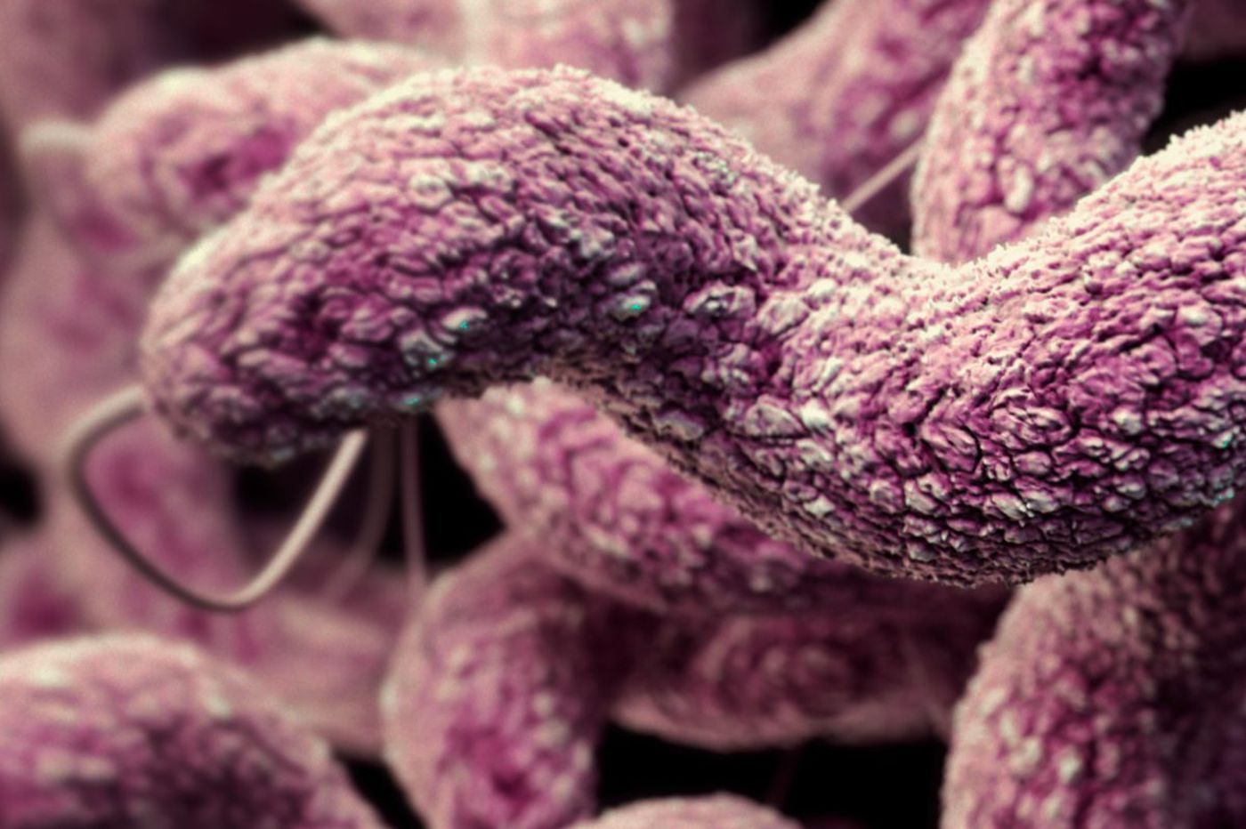 The world keeps using more antibiotics and it's making us sick