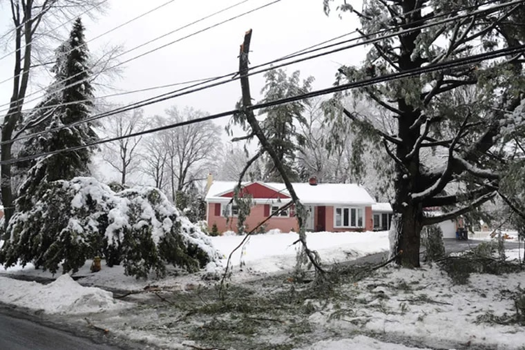 A pine tree branch leans against power lines on S. New St. in West Chester Feb. 5, 2014.  An overnight freezing rain storm swept through the Philadelphia Metro Region leaving downed trees and power lines in its wake.  ( CLEM MURRAY / Staff Photographer )