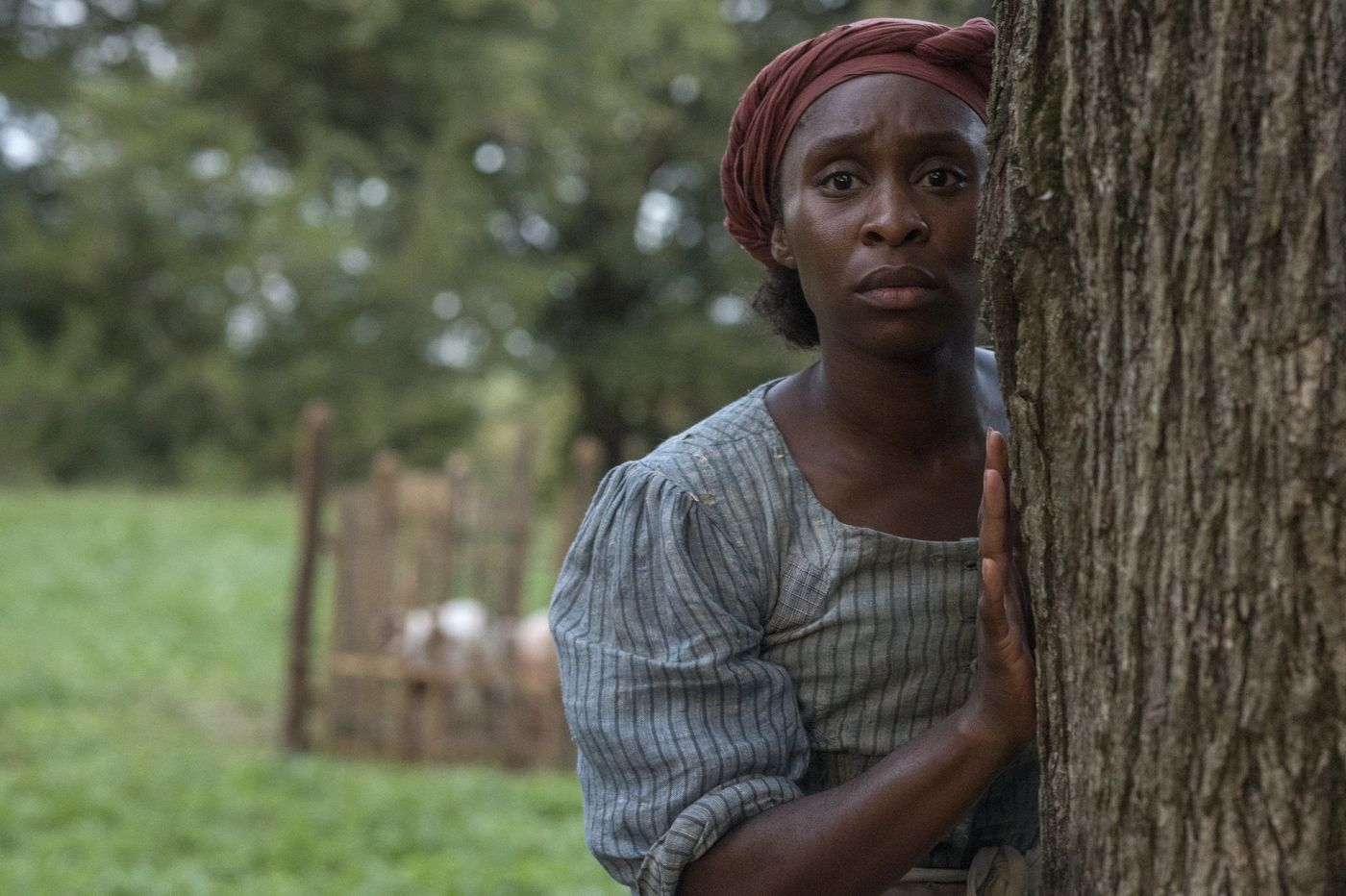 Regal Theaters offers free local screenings of 'Harriet' for Black History Month