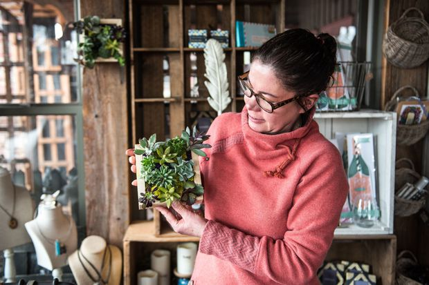A local succulent expert takes the hippest houseplant to the next level