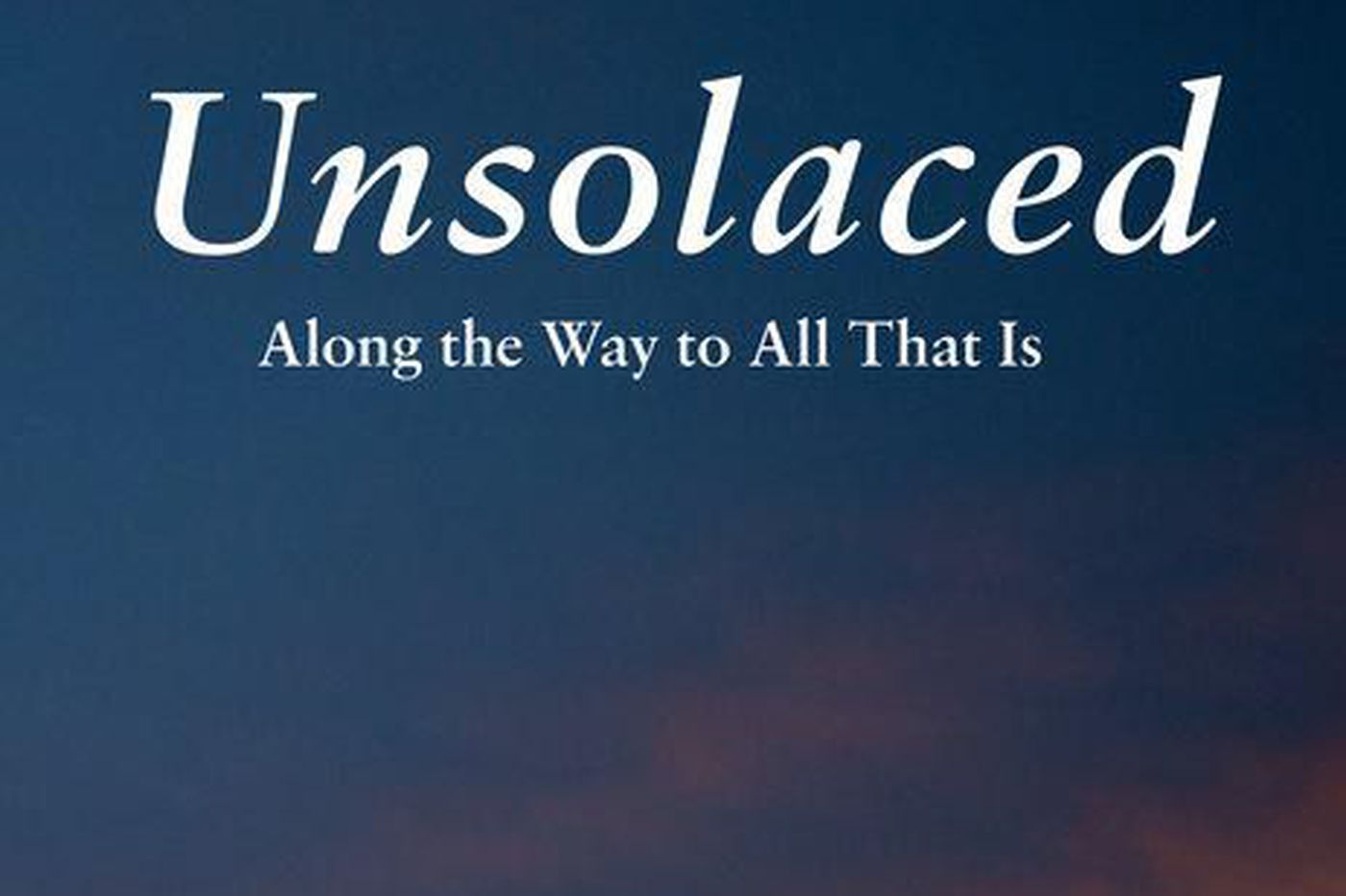 'Unsolaced' explores open spaces that no longer provide comfort   Book review