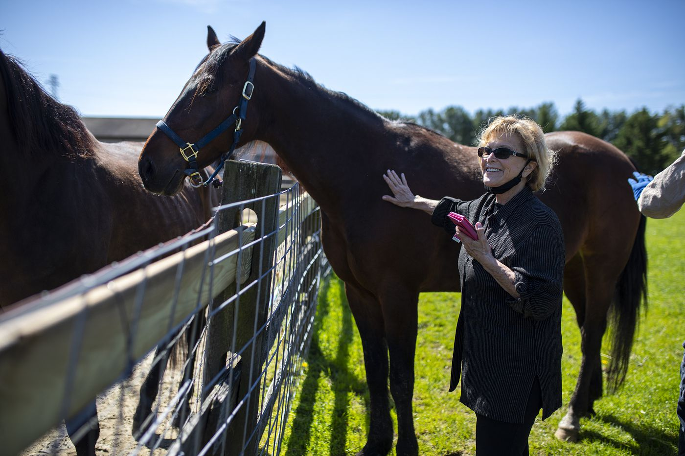 Philadelphia-area horse rescues are struggling amid the coronavirus