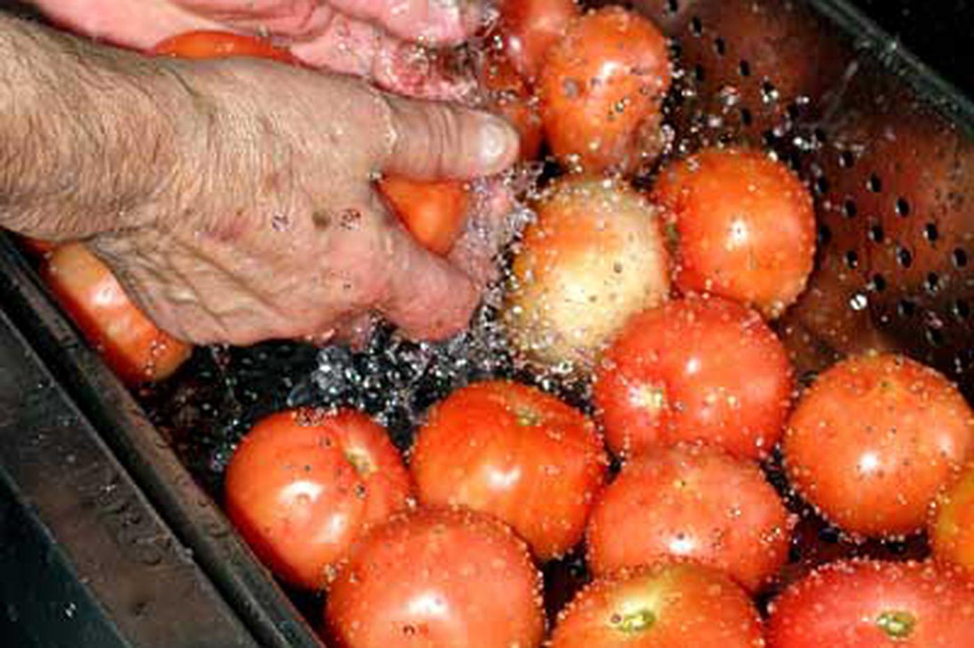 McDonald's pulls sliced tomatoes amid fears
