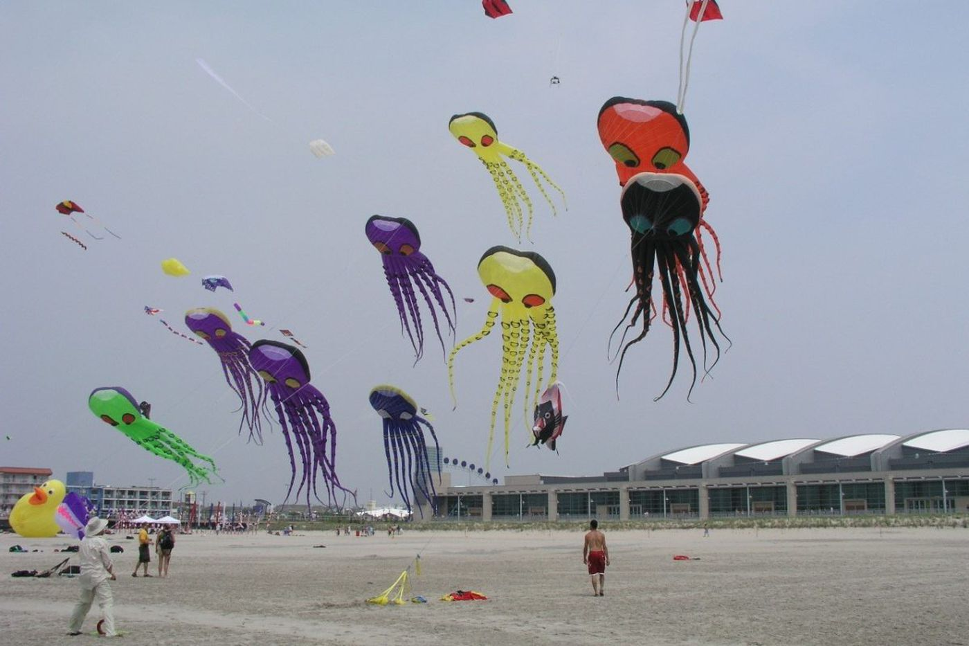 International Kite Festival and other great things to do Down the Shore over Memorial Day weekend