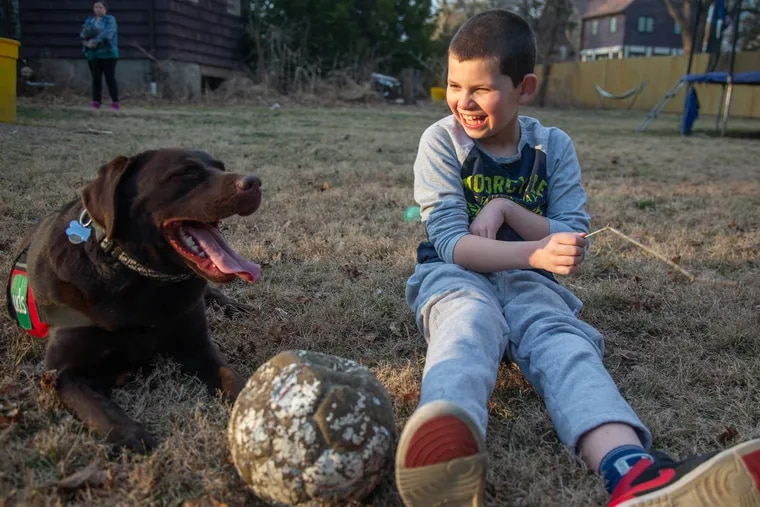 Dylan Gordon sits with his service dog, Rader, at their home in Bala Cynwyd. At age 1 1/2, Dylan was diagnosed with severe autism. After months of waiting, Dylan was matched with Rader, who is able to calm him during stressful times.