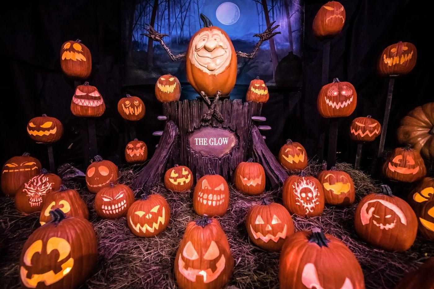 Thousands of pumpkins, real and fake, to illuminate Fairmount Park
