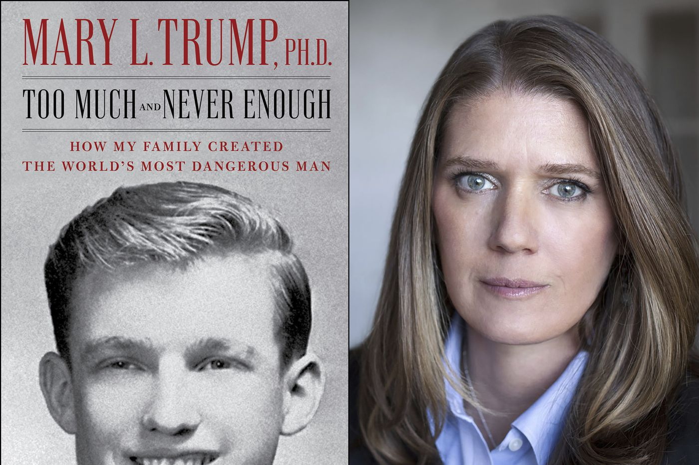 Mary Trump's book offers a devastating portrayal of the president
