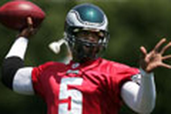 Details of the McNabb deal