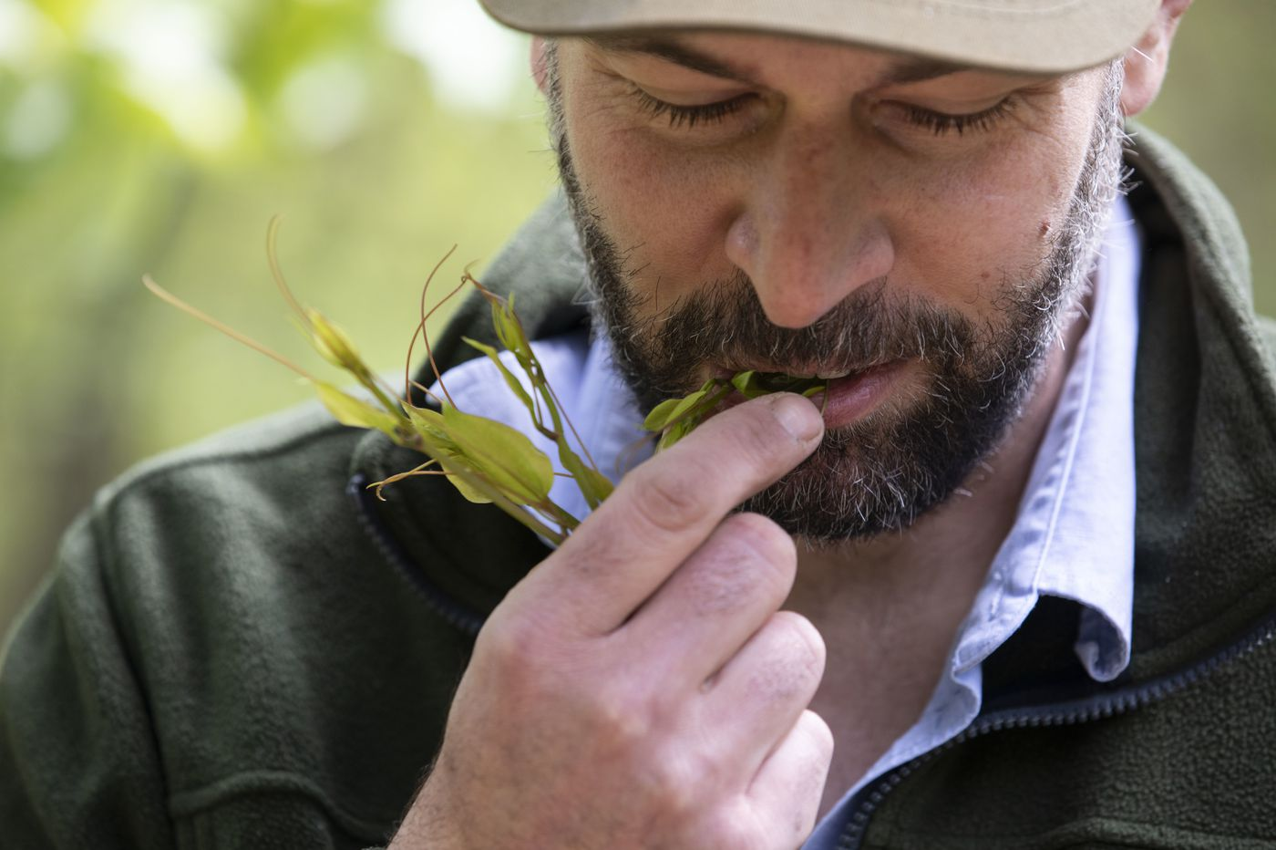 Foraging chef Phil Manganaro digs deeper for wild ingredients