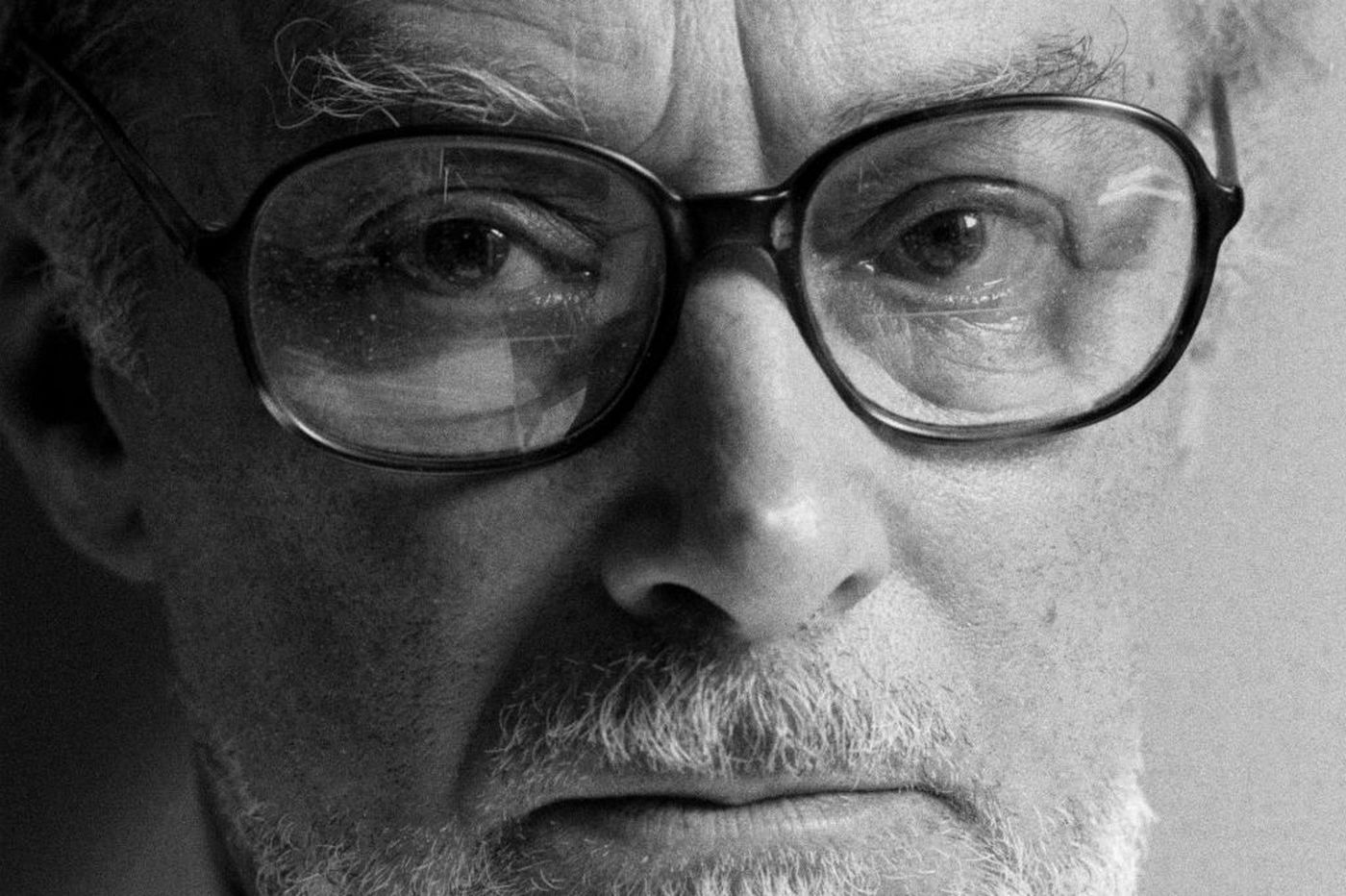 'Collected Works' makes case for Primo Levi's singular art