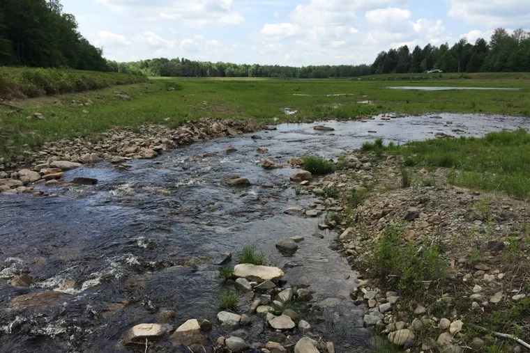 A portion of the 500 acres containing headwaters of the Lehigh River acquired by the Wildlands Conservancy and ultimately funded by the William Penn Foundation.