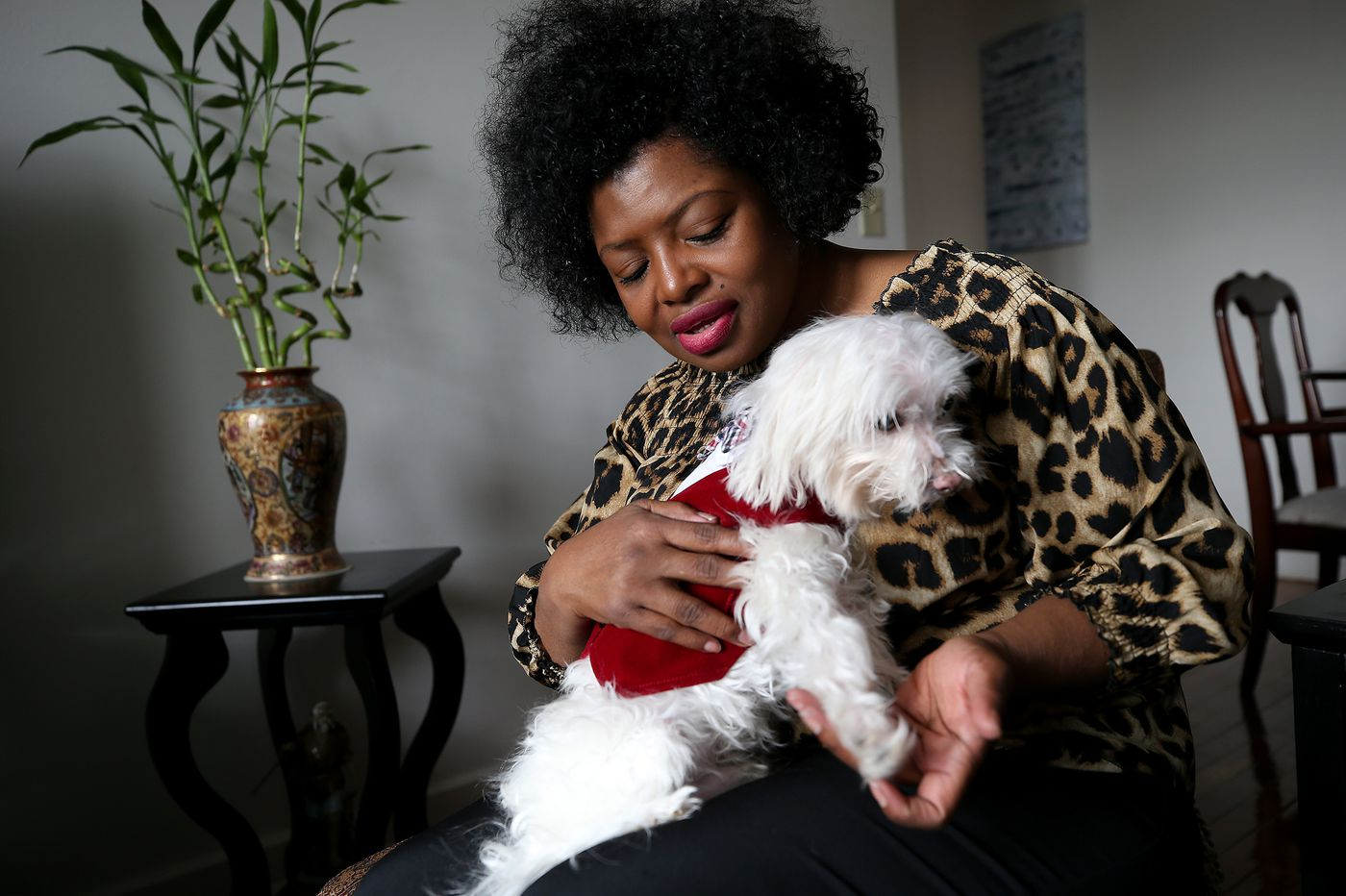 When people get sick or military members deploy, PACT finds free foster care for their pets