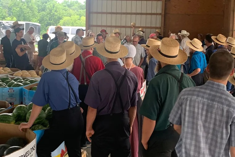 Hauling produce in trucks and wagons, farmers from Chester and Lancaster Counties meet buyers from Philadelphia, the suburbs, jamming the Oxford Produce Auction three days a week..
