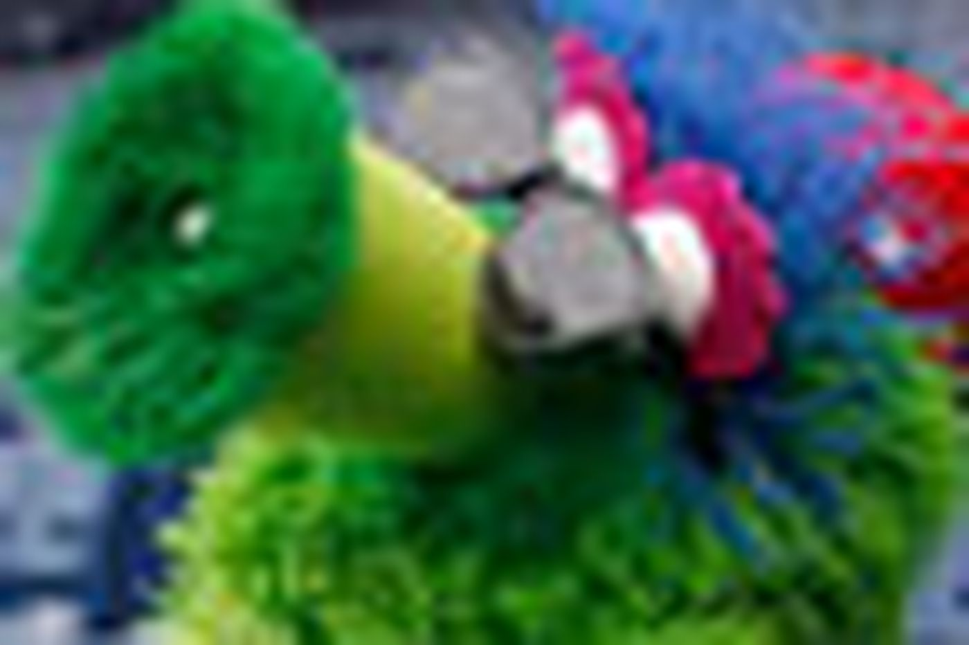 Billy's stunned at Phanatic's snub