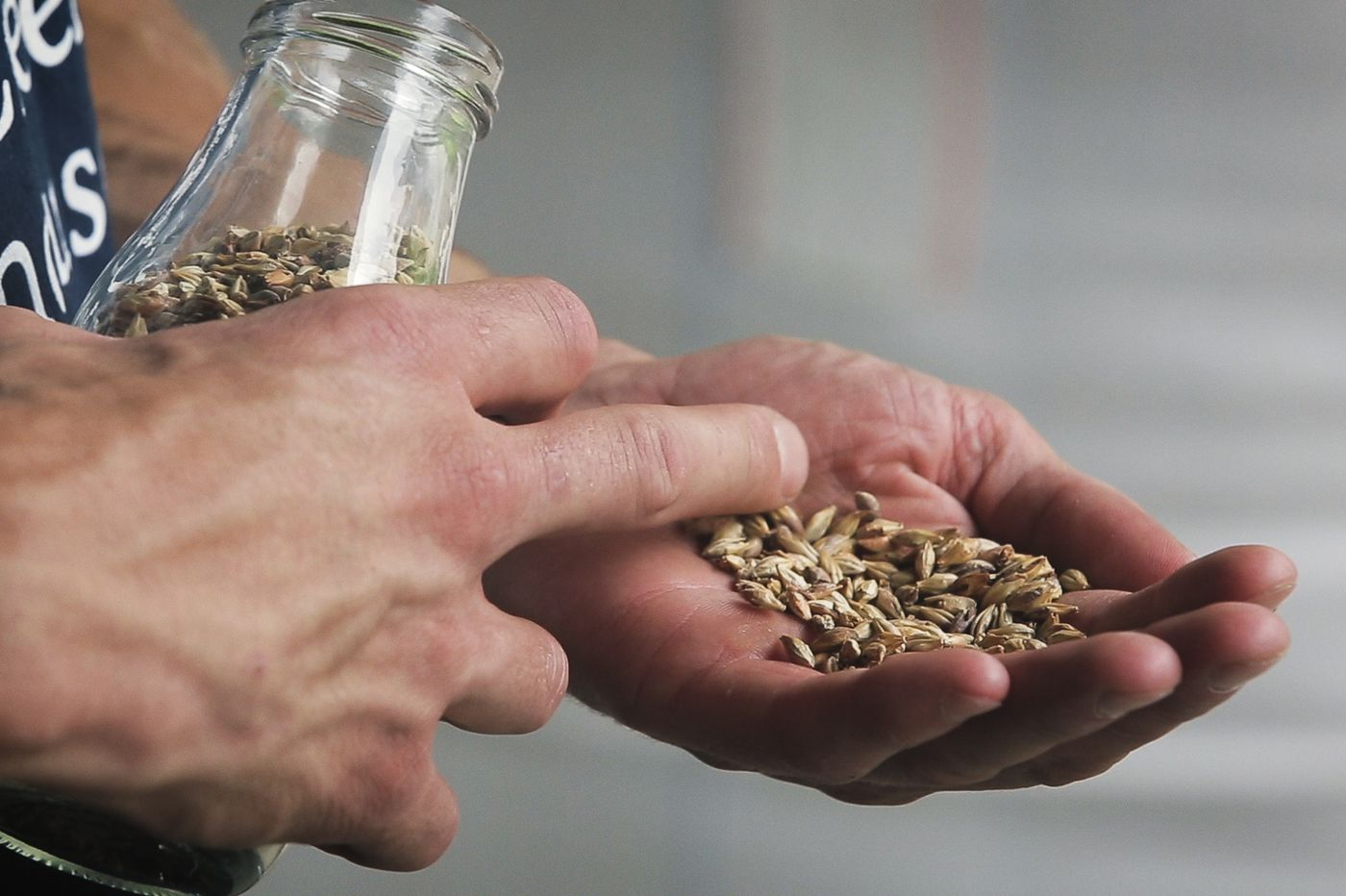 After a rough growing season, region's farmers, millers will gather to talk grain