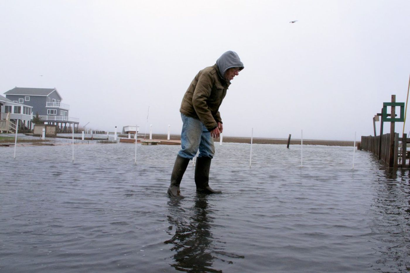 Report: Sea rise means more tidal flooding this year for Jersey Shore