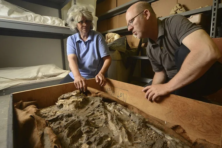Janet Monge and William Hafford investigate the 6,500-year-old skeleton. (Kyle Cassidy)