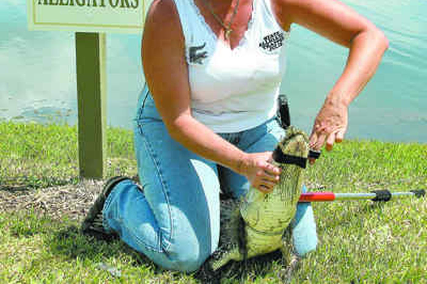 She's hot on the trail of nuisance gators in Florida