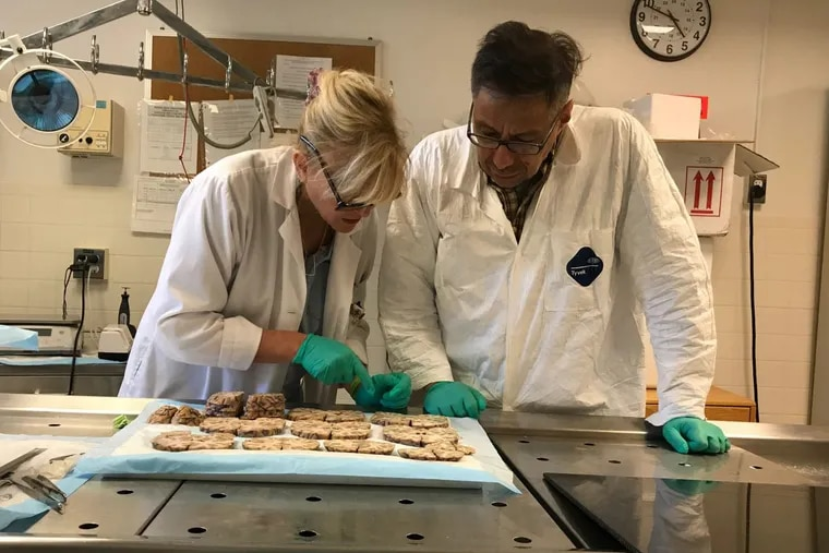 Ann McKee, Director of the Boston University CTE Center, and neuropathologist Victor Alvarez conduct the post-mortem study of the brain of former NFL player Aaron Hernandez.