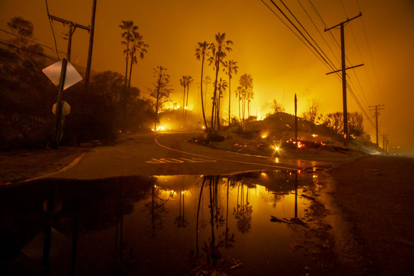 Paradise has burned to the ground, and officials now try to pick up the pieces