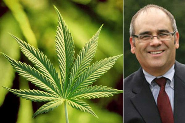 Homegrown marijuana proposed for New Jersey