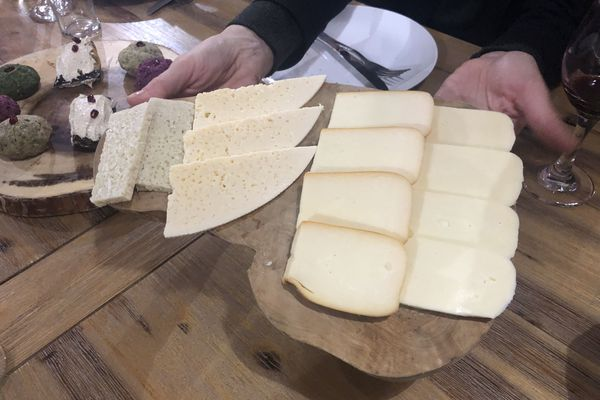 Sulguni from Georgia is Craig LaBan's cheese of the month