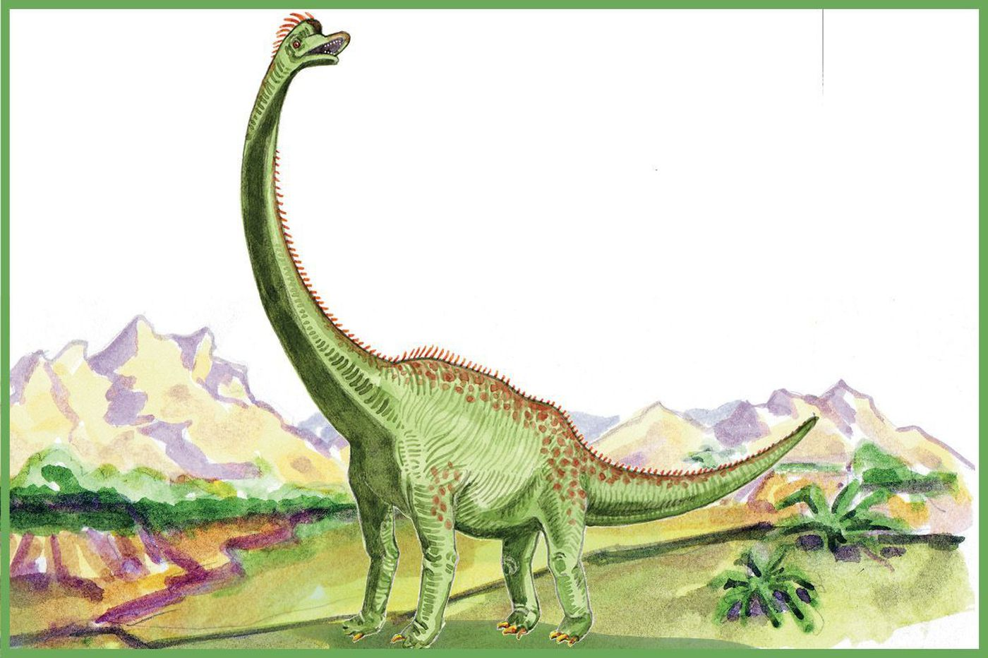 Hey, kids! Draw this dino for a chance to see your artwork published